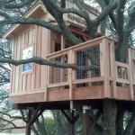Finished treehouse....