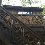 Natural wood railing